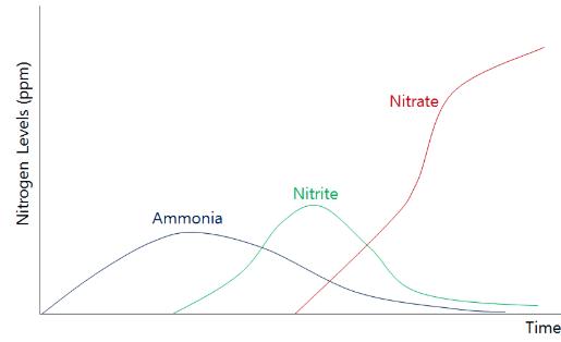 Lee, Figure 3. Different nitrogen levels over time (Baliga, n.d.)